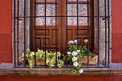 Flowers In Window Box San Miguel De Allende Poster