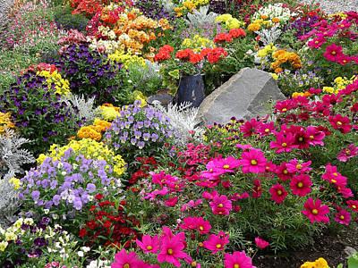 Flowers Of Skagway Poster by Karen Nicholson