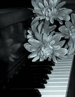 Flowers On Piano Keys Poster by Dan Sproul