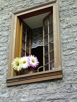 Poster featuring the photograph Flowers On The Sill by John Schneider