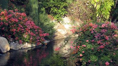 Poster featuring the photograph Flowers Over Pond by Amanda Eberly-Kudamik