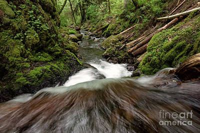 Flowing Downstream Waterfall Art By Kaylyn Franks Poster