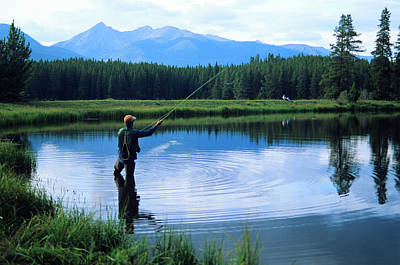 Fly Fishing In Rocky Mountain National Park Poster