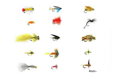 Fly Fishing Nymphs Wet And Dry Flies Poster by Sharon Blanchard