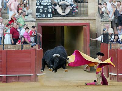 Flying Bull Poster by Felipe Rodriguez