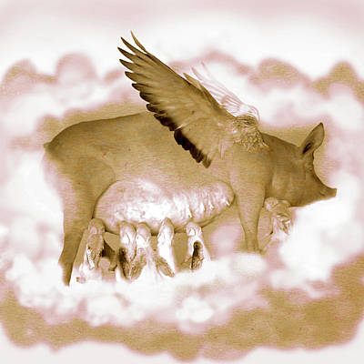 Flying Pigs Poster by Kd Neeley