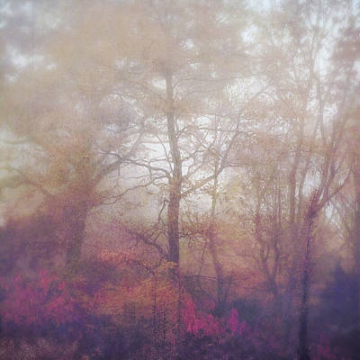 Fog In Autumn Mountain Woods Poster