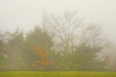 Poster featuring the photograph Fog In Autumn by Wanda Krack