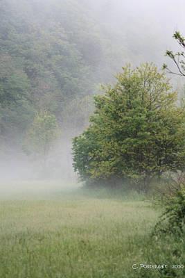 Fog Rising Poster