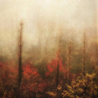 Foggy Fall On The Parkway Poster