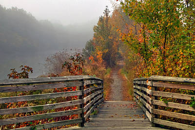 Foggy Fall Trail Poster