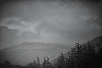 Foggy Hills Poster