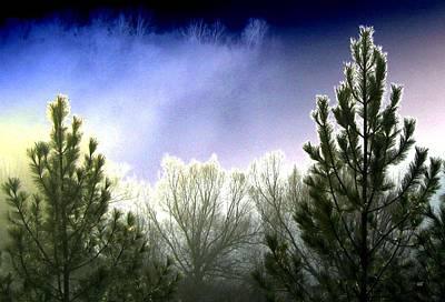 Foggy Moonlit Night Poster