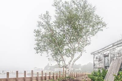 Foggy Morning At Camp Ellis Poster
