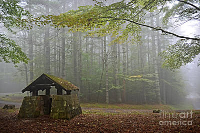Foggy Morning At Droop Mountain Poster