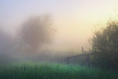 Poster featuring the photograph Foggy Morning by Dan Jurak