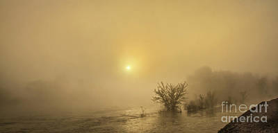 Foggy Morning On The Payette River Poster