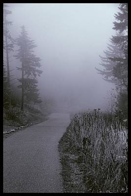 Foggy Path Clingman's Dome Poster