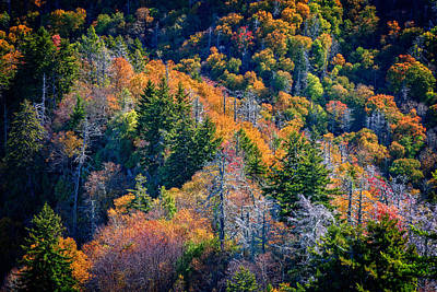 Foliage From Chimney Tops Poster by Rick Berk