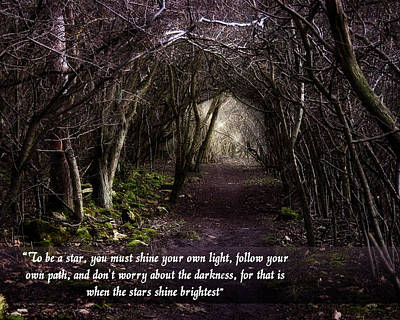 Follow Your Own Path Poster by Vicki Field