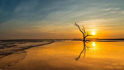 Folly Beach Skeleton Tree At Sunset - Folly Beach Sc Poster