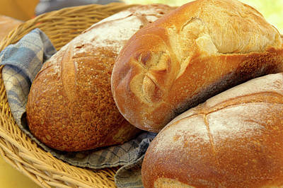 Poster featuring the photograph Food - Bread - Just Loafing Around by Mike Savad