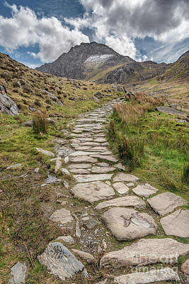Footpath To Tryfan Poster by Adrian Evans
