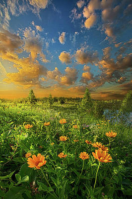 For A Moment All The World Was Right Poster by Phil Koch