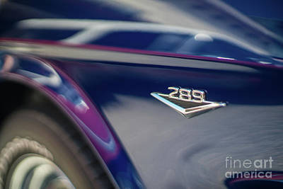 Ford Mustang 289  Poster by Mike Reid