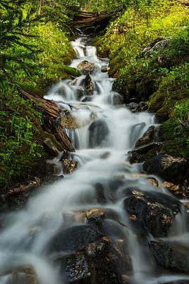 Forest Falls Poster by Hudson Marsh