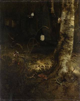 Forest Floor With A Snake, Lizards, Butterflies And Other Insects, Otto Marseus Van Schrieck, 1650 - Poster by Celestial Images