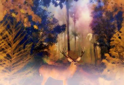 Forest Glen Poster by Valerie Anne Kelly