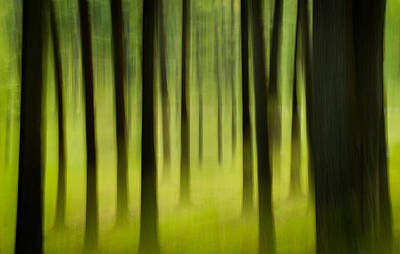 Poster featuring the photograph Forest by Joye Ardyn Durham