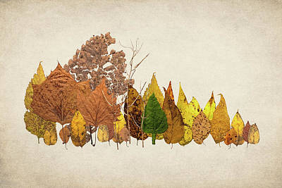 Forest Of Autumn Leaves I Poster by Tom Mc Nemar