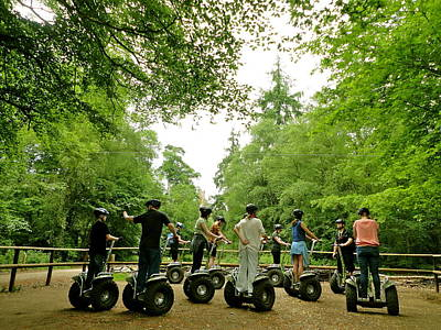 Forest Segway Poster