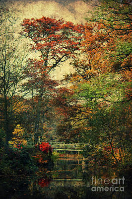 Forest Vintage Poster by Angela Doelling AD DESIGN Photo and PhotoArt