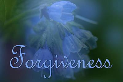 Forgiveness Blue Bells Poster