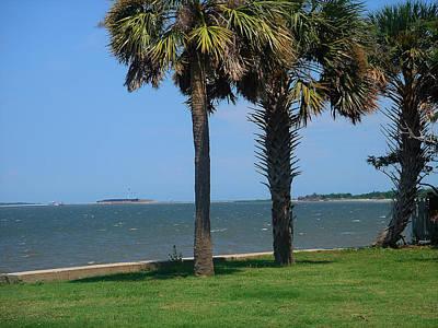 Fort Sumter Charleston Sc Poster by Susanne Van Hulst