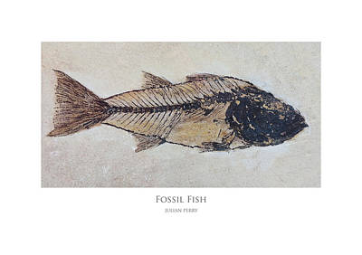 Poster featuring the digital art Fossil Fish by Julian Perry