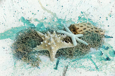 Found At Sea Beach Still Life Art Poster by Jai Johnson