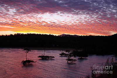Poster featuring the photograph Four Elements Sunset Sequence 3 Coconuts Qld by Kerryn Madsen - Pietsch