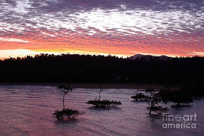 Poster featuring the photograph Four Elements Sunset Sequence 8 Coconuts Qld  by Kerryn Madsen - Pietsch