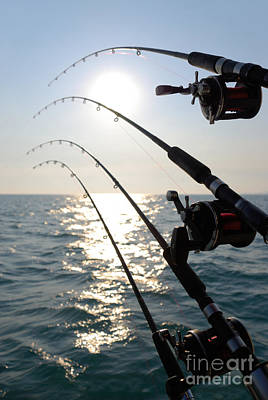 Four Fishing Rods At Sunrise Poster by Paul Velgos