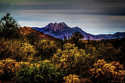 Four Peaks From Jacob's Crosscut Trail Poster by Roger Passman