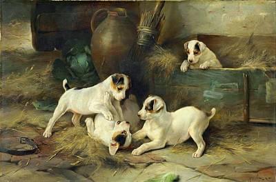 Four Puppies At Play Poster
