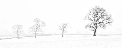 Four Trees Farndale Poster by Janet Burdon