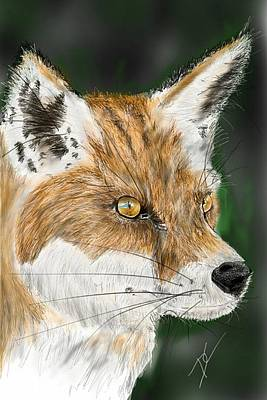 Poster featuring the digital art Fox by Darren Cannell