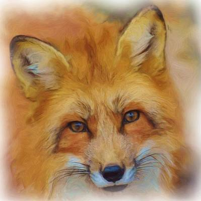 Fox Face Taken From Watercolour Painting Poster