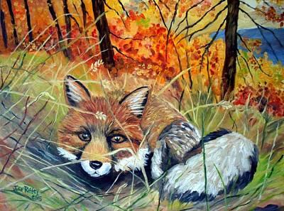 Fox-   Fox In Hiding Poster