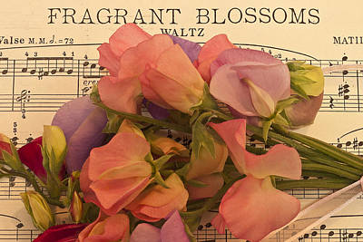 Fragrant Blossoms Poster